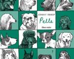 676: Pelle